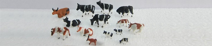 2-color_cattle.jpg